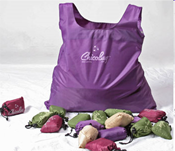Reusable-Green-Bag-Image